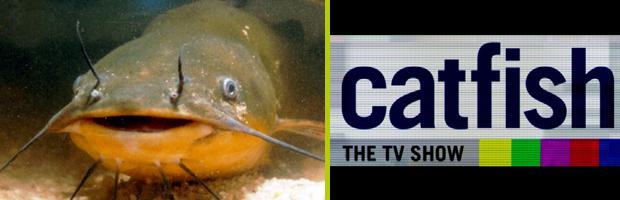 Catfish Banner